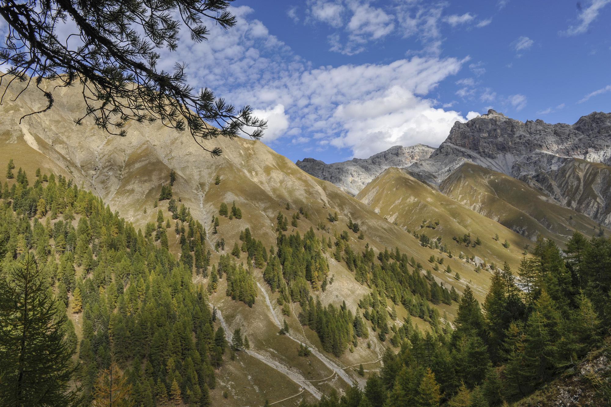 Schweizerischer Nationalpark Slide 4