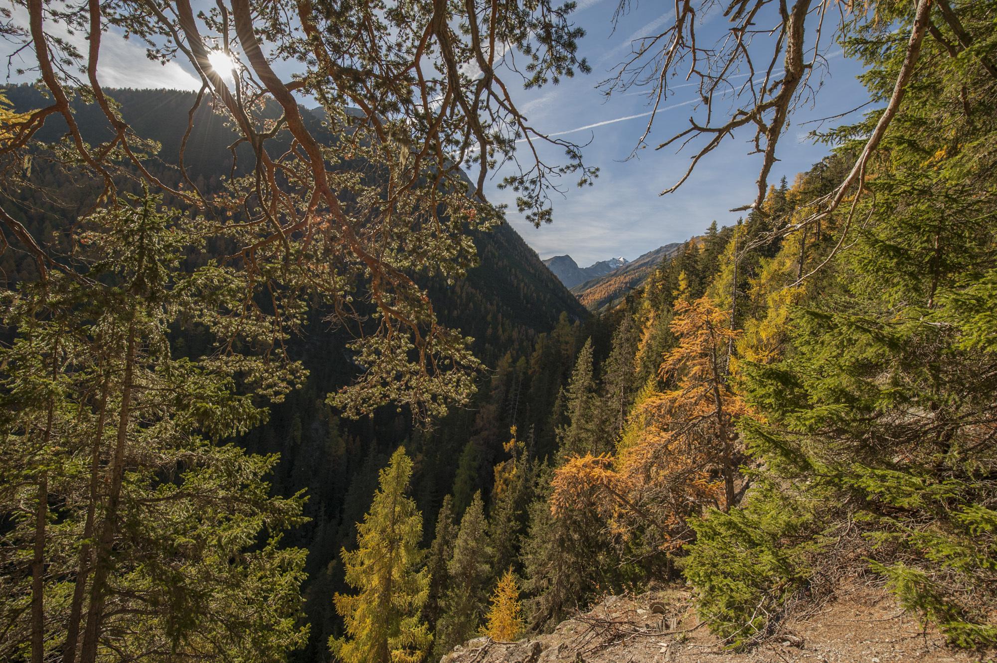 Swiss National Park Slide 5