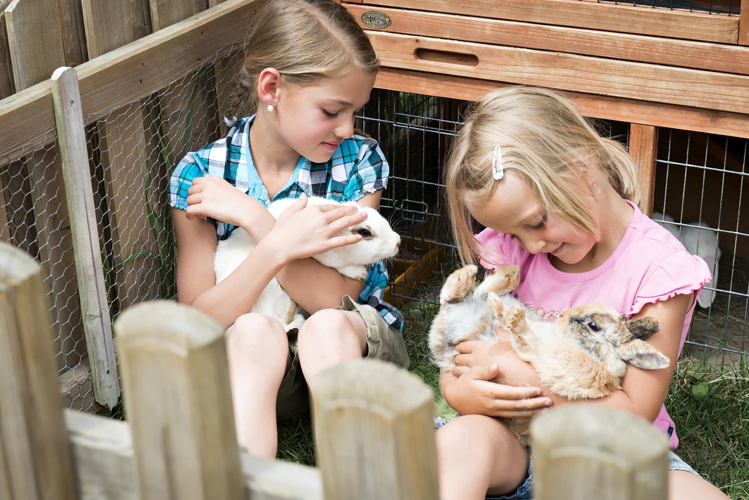 Furtschellas Petting Zoo