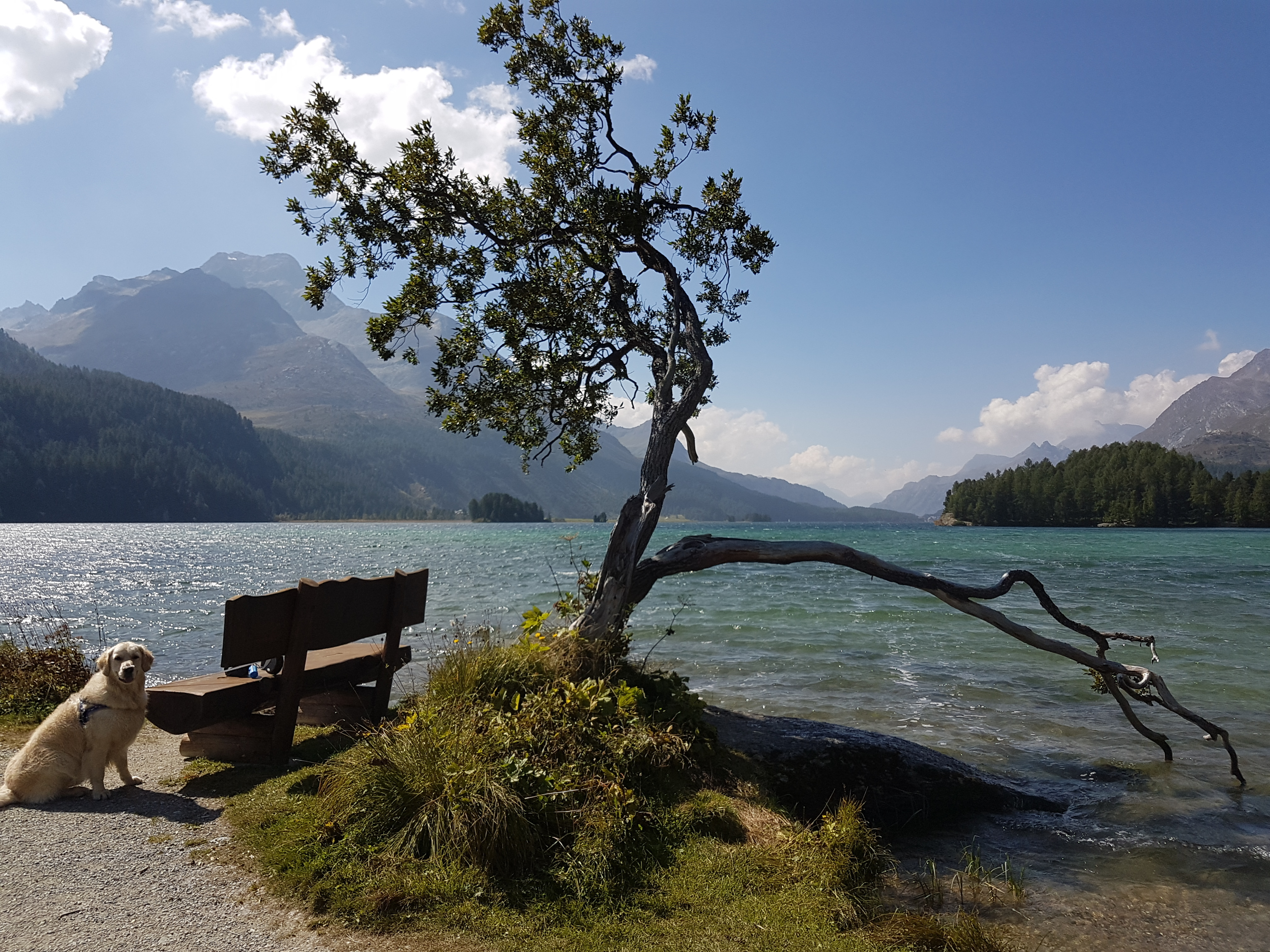 Benches Lake Sils Slide 5