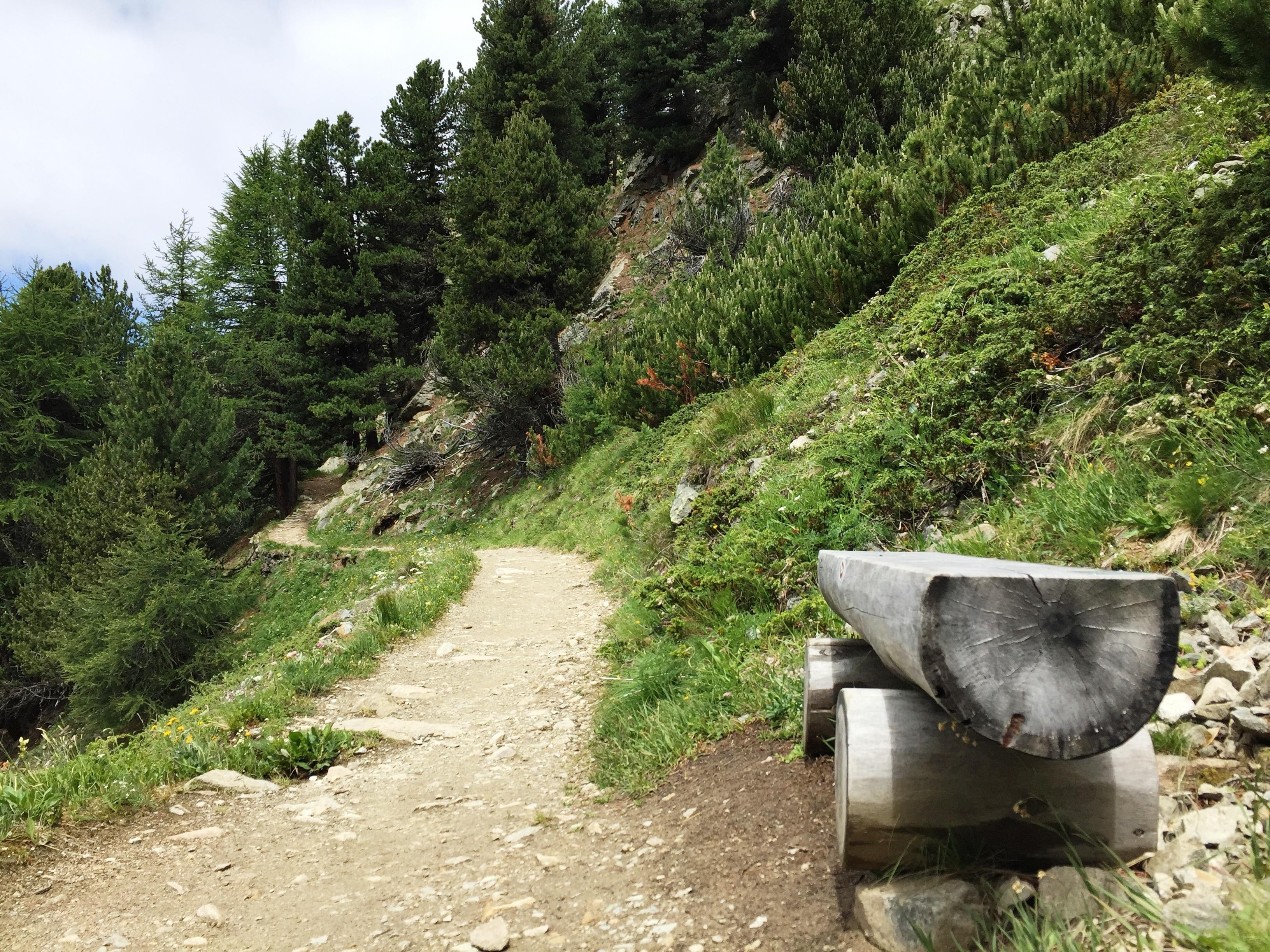 Sitzbänke Panoramaweg Muottas-Muragl - Alp Languard Slide 11