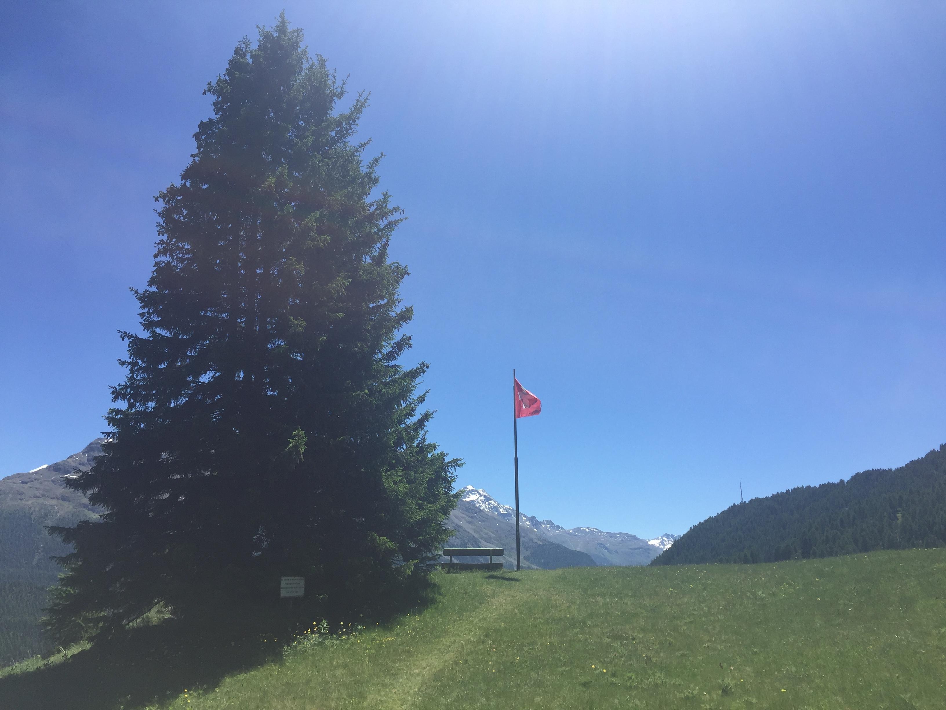 Naturfreunde Hütte Cristolais Slide 2