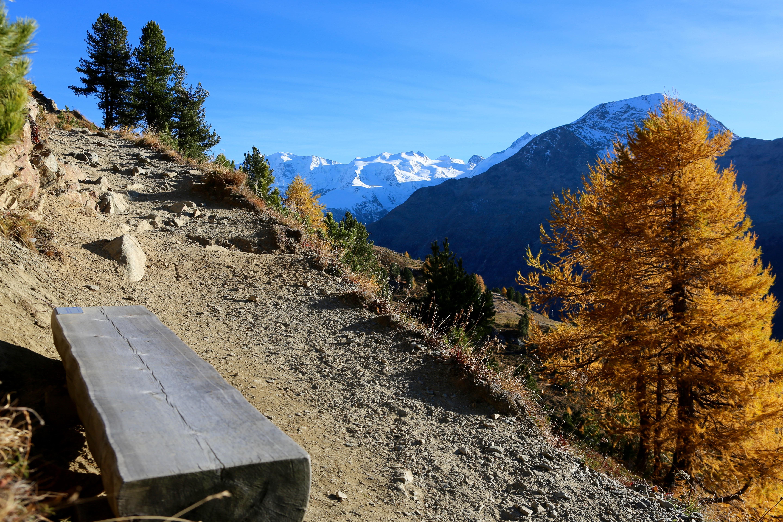 Sitzbänke Panoramaweg Muottas-Muragl - Alp Languard Slide 14