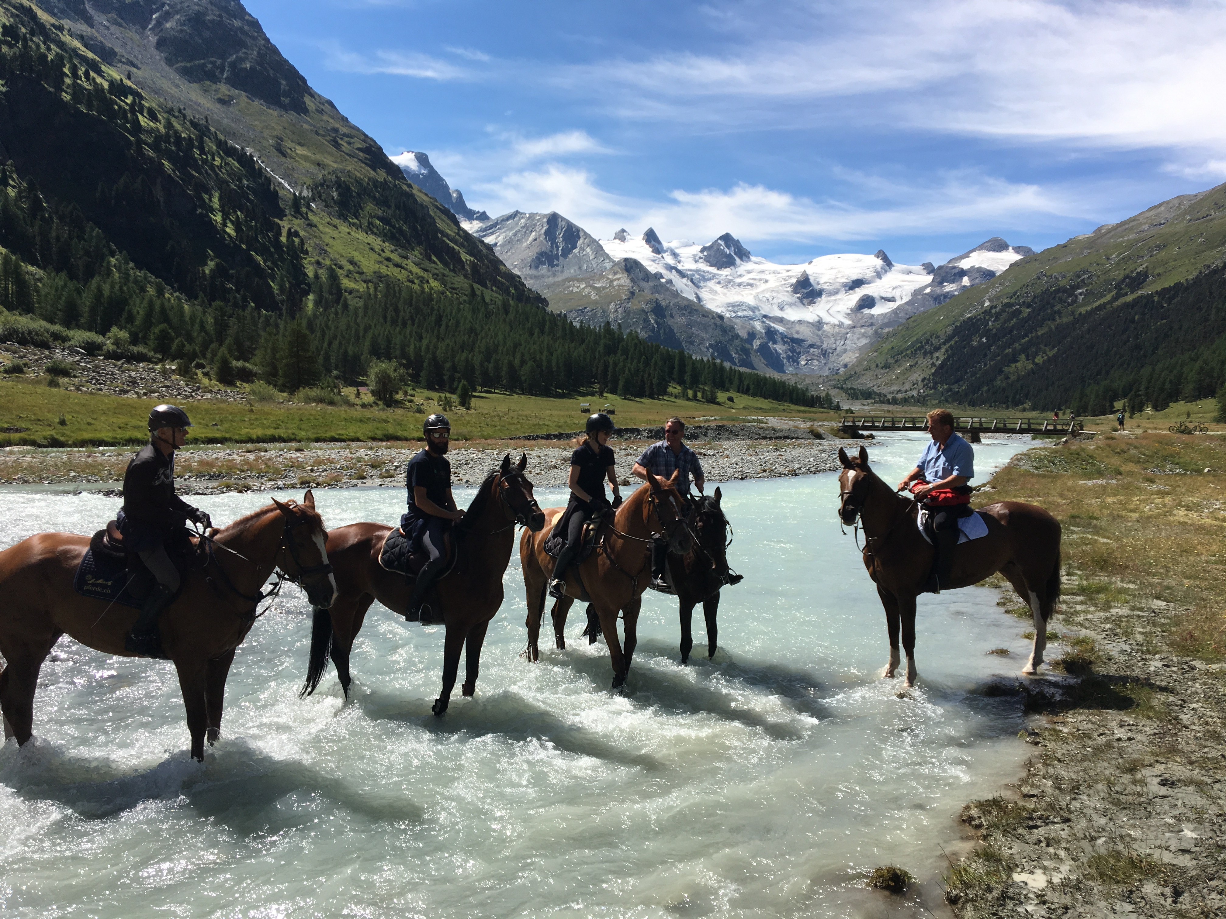 Pferdepension / Ferienpferderesidenz Slide 1