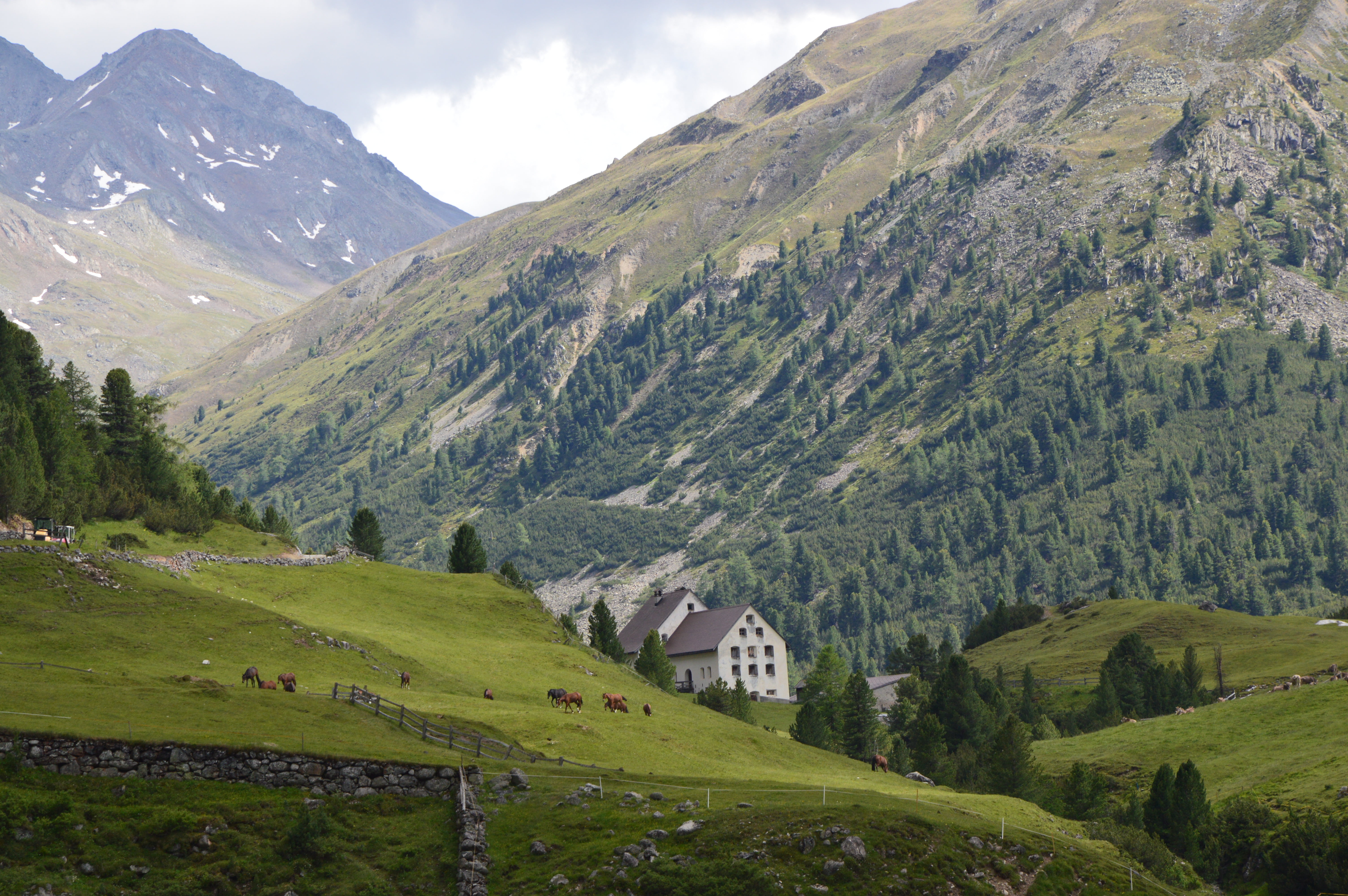 Alp Serlas, La Punt Chamues-ch