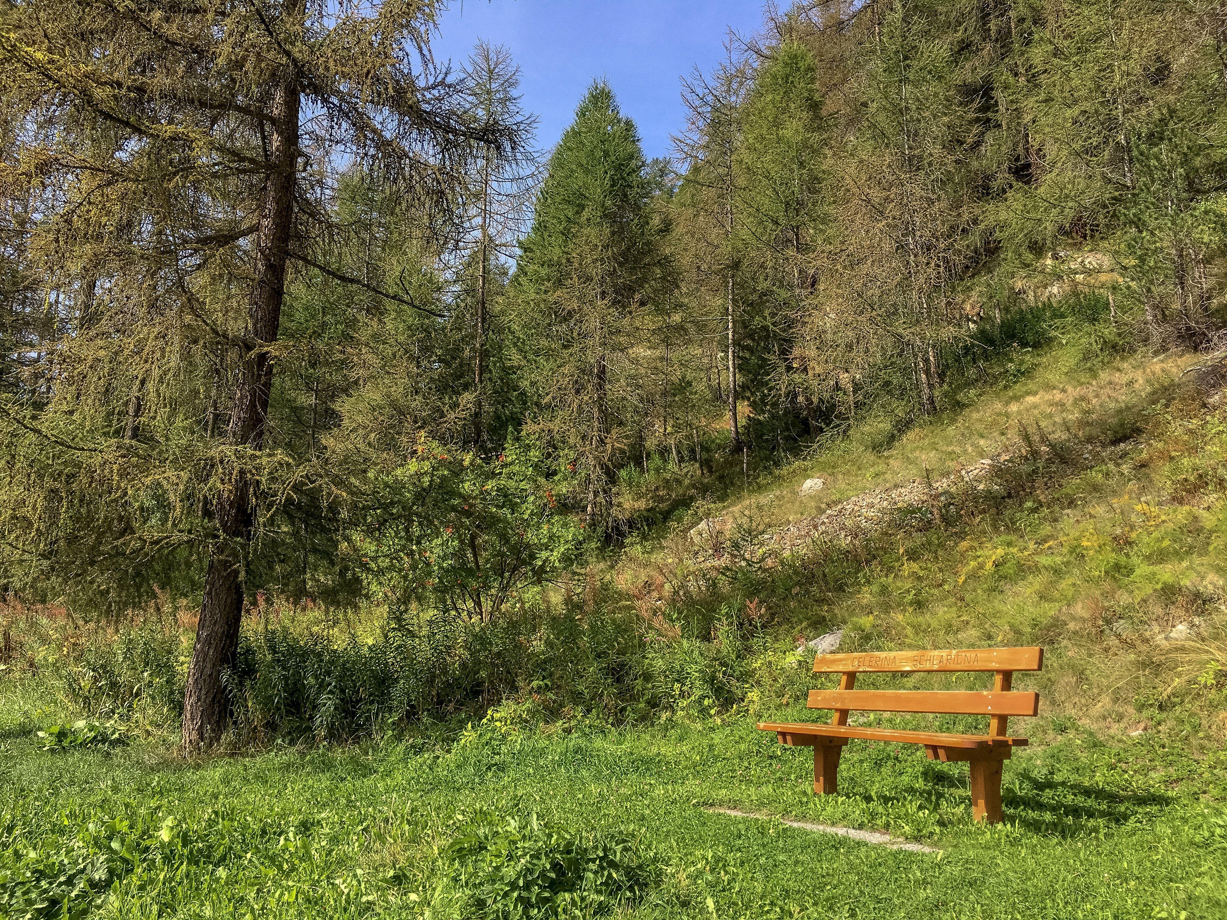 Sitzbank Cresta Run Slide 1
