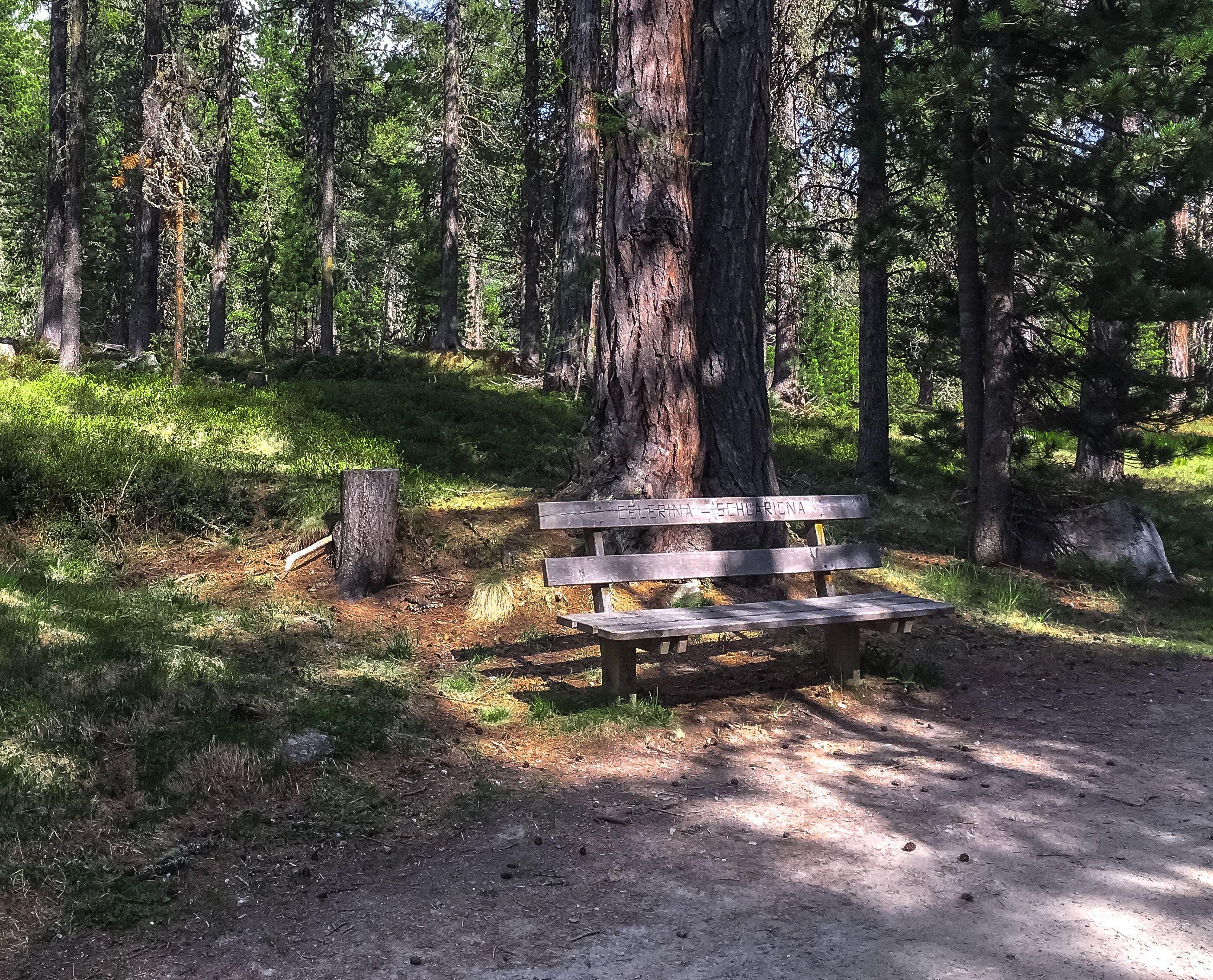 Sitzbänke Stazerwald Slide 2