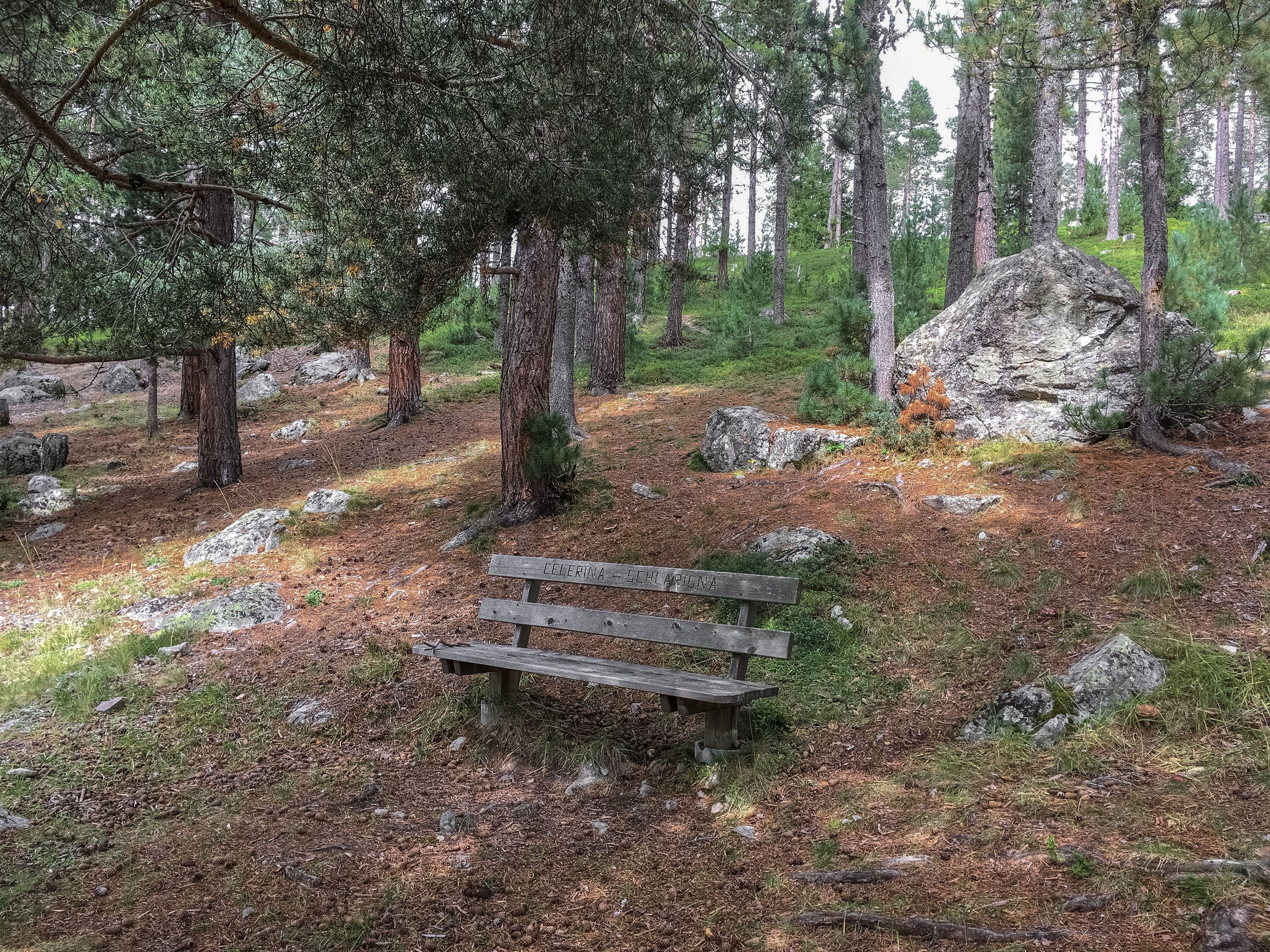Sitzbänke Stazerwald Slide 7