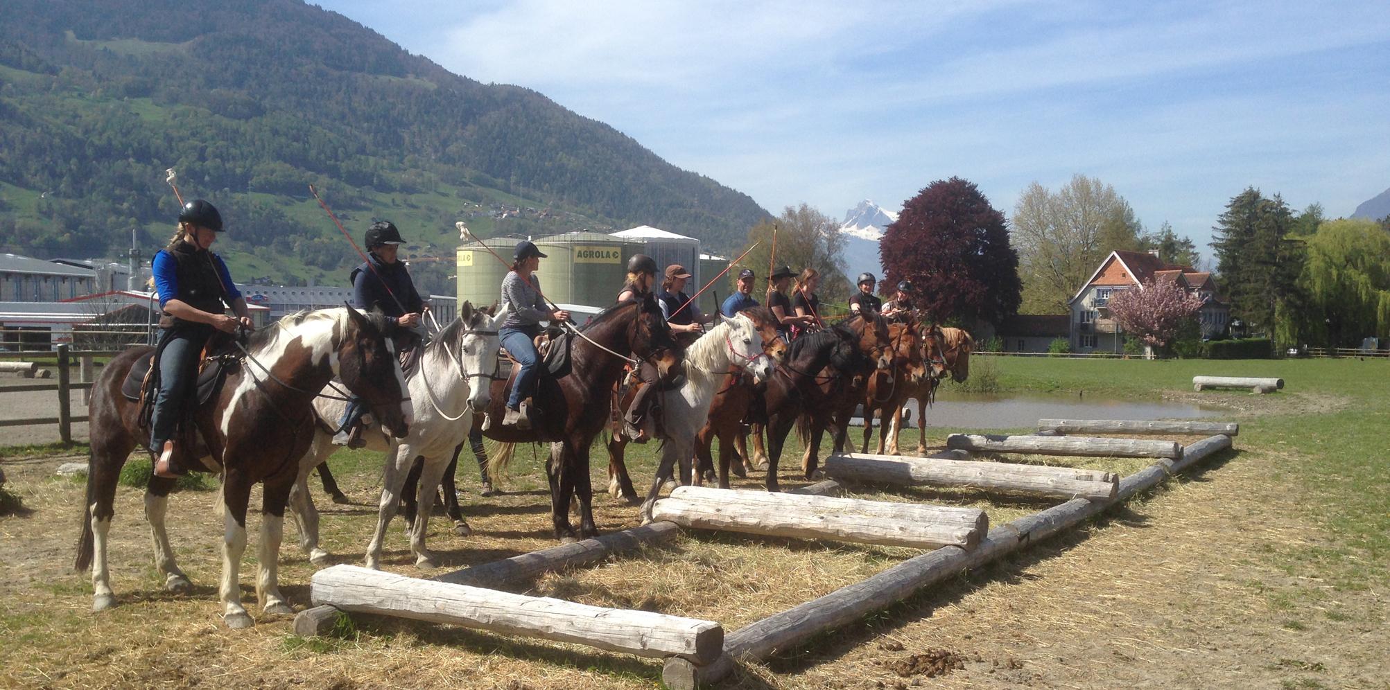 HETS die Schule für Natural Horsemanship Slide 2