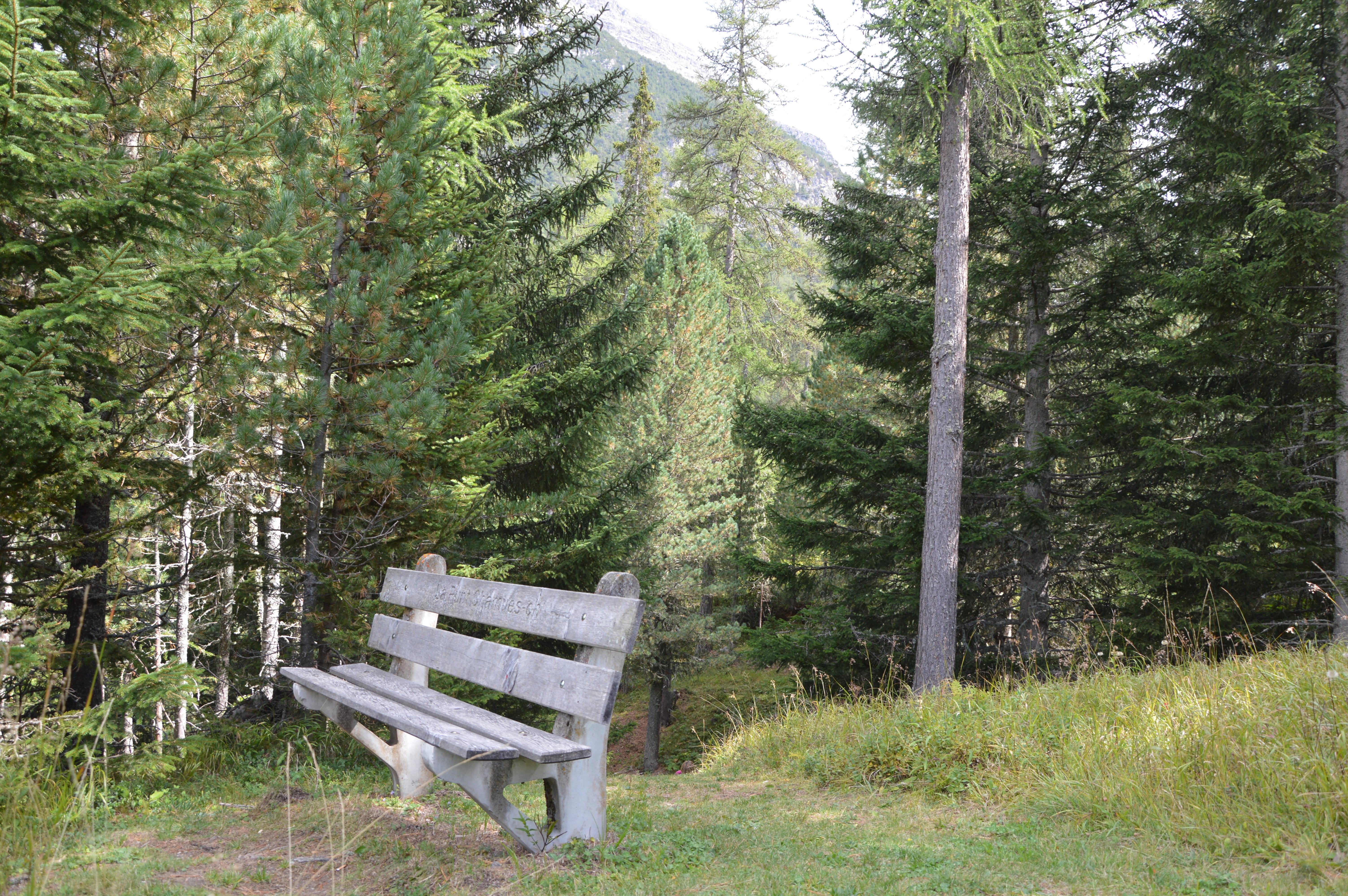 Sitzbank Waldgalerie Slide 2