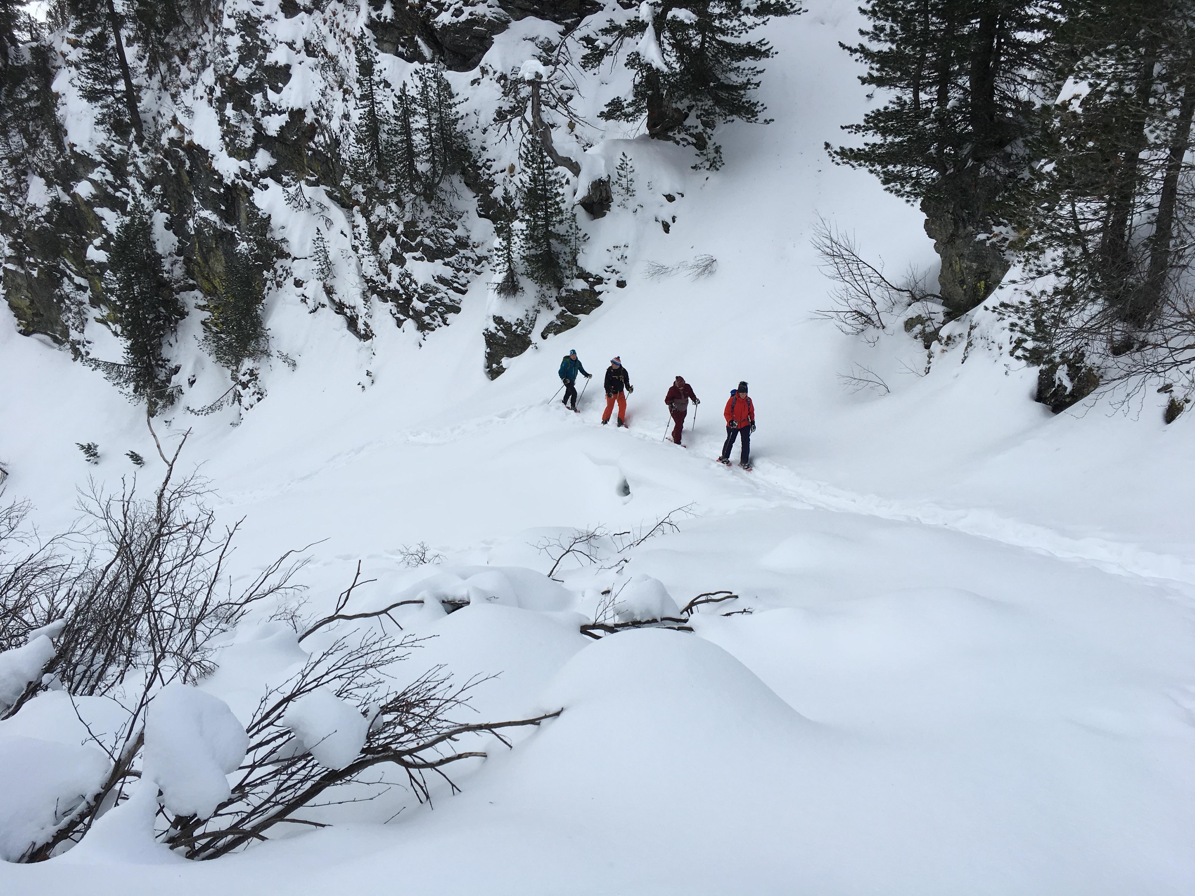 Bernina Trekking (Rudolf Wiesner, Schneeschuhwanderleiter mit Eidg. Fachausweis) Slide 7