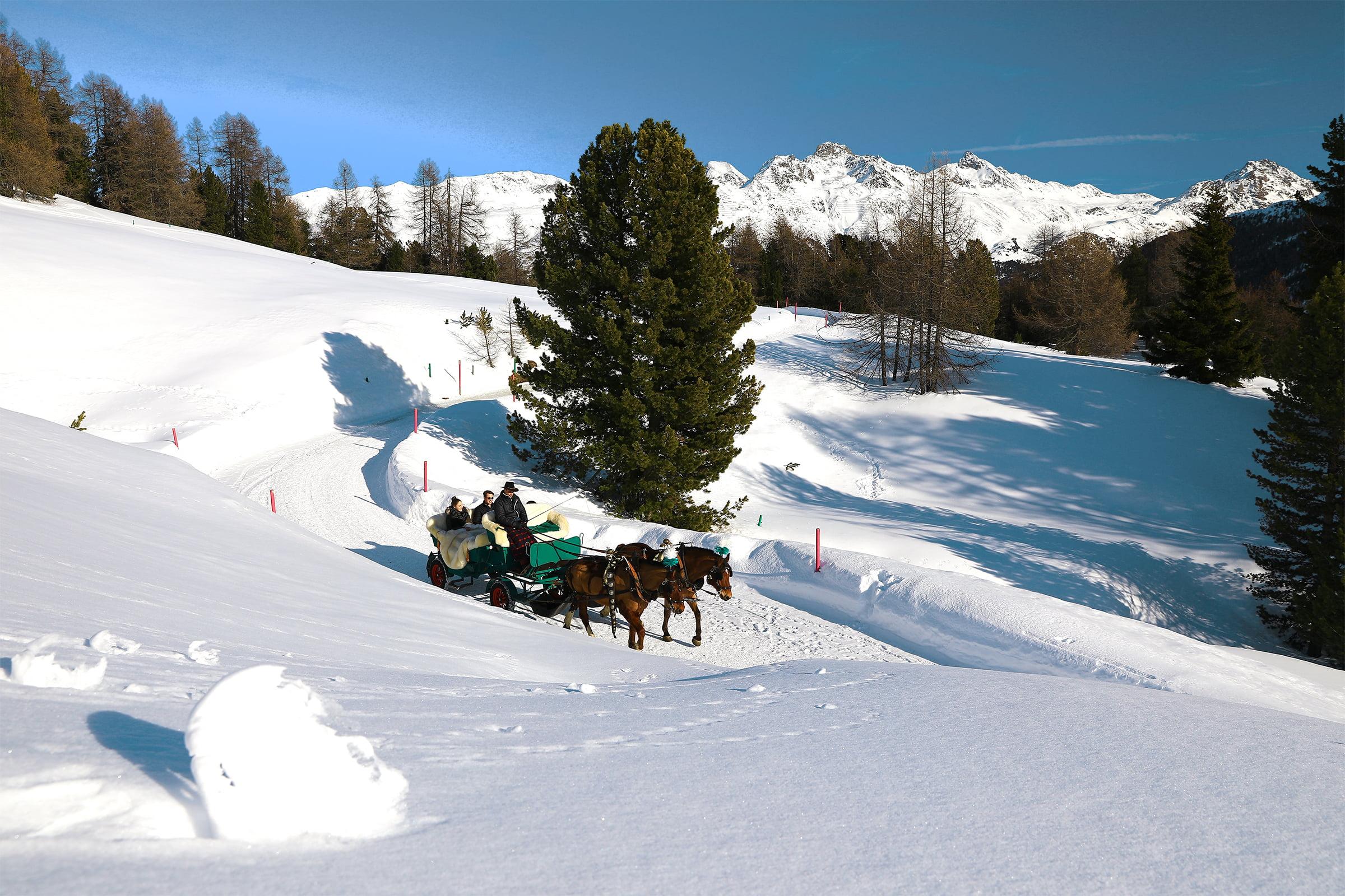 Romantische Kutschenfahrten oberhalb von St. Moritz