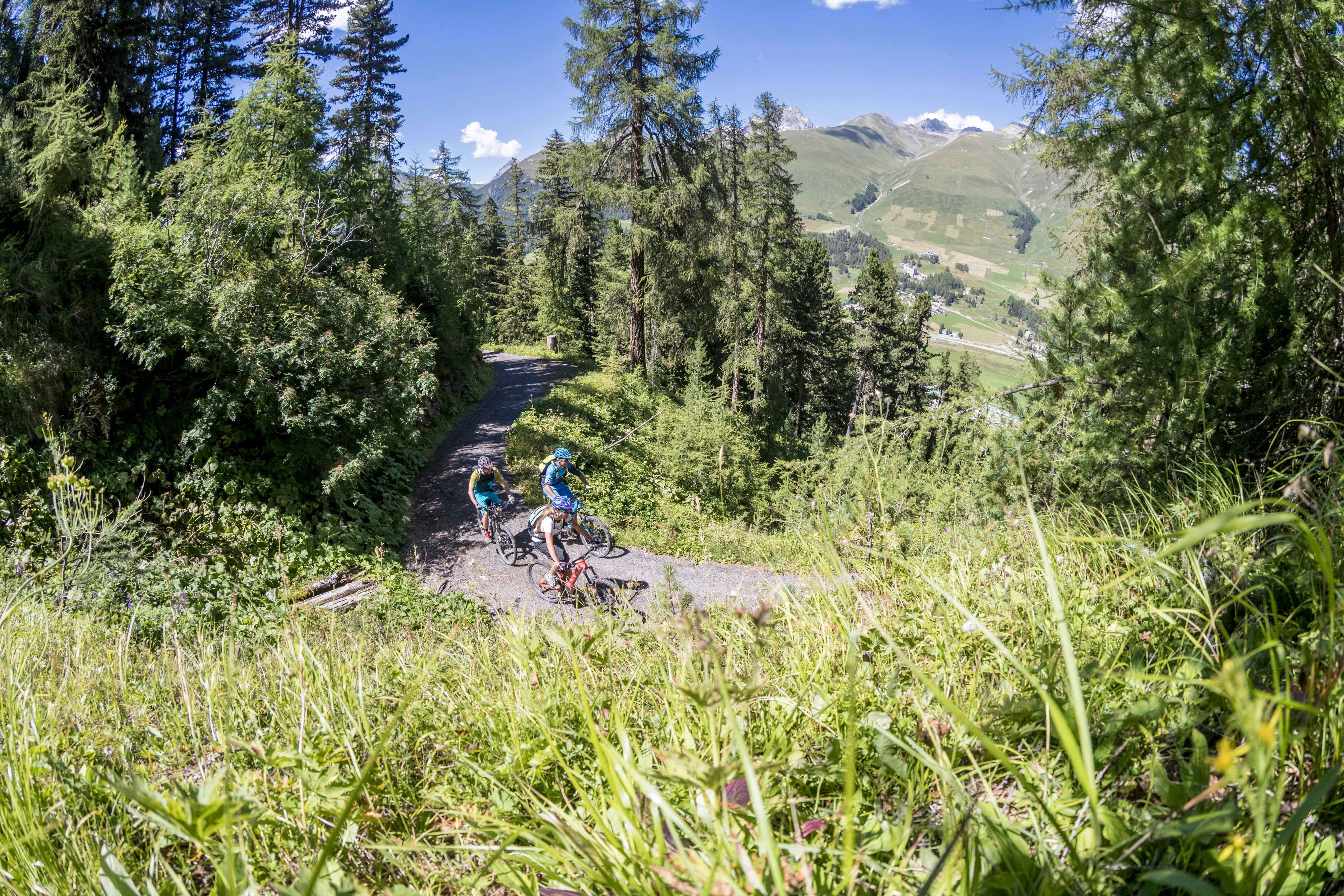 Biker at Forrest Staz