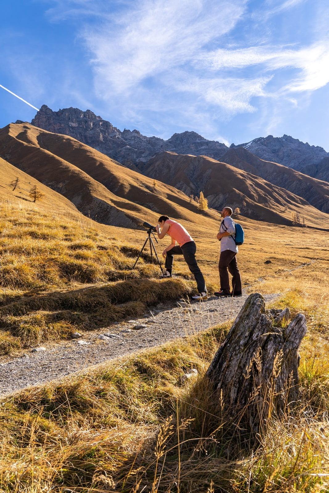 Der Schweizerische Nationalpark