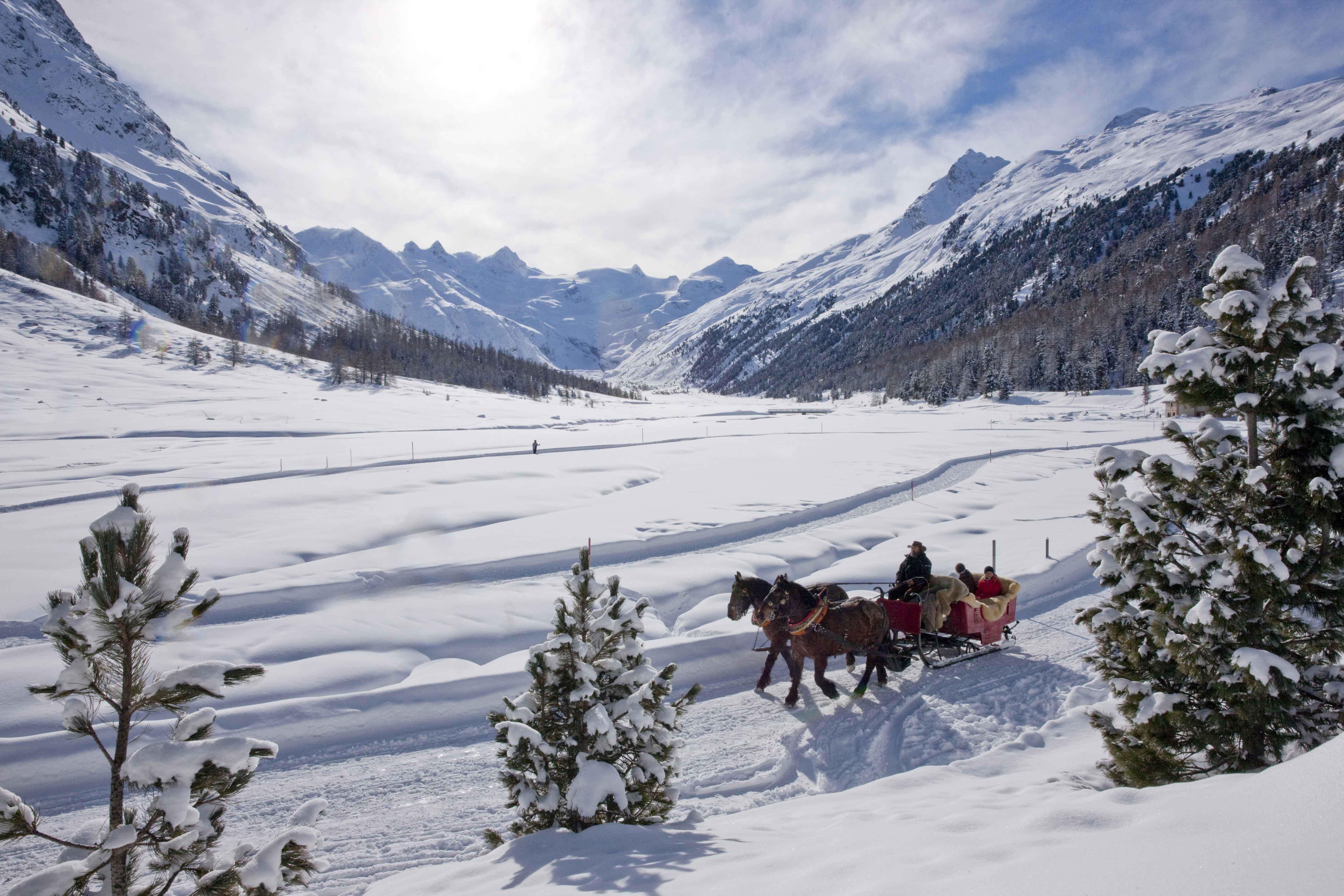 Horse-drawn sleigh ride into the Val Roseg
