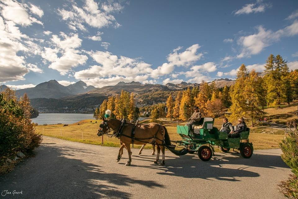 Kutschenfahrten mit St. Moritz Experience
