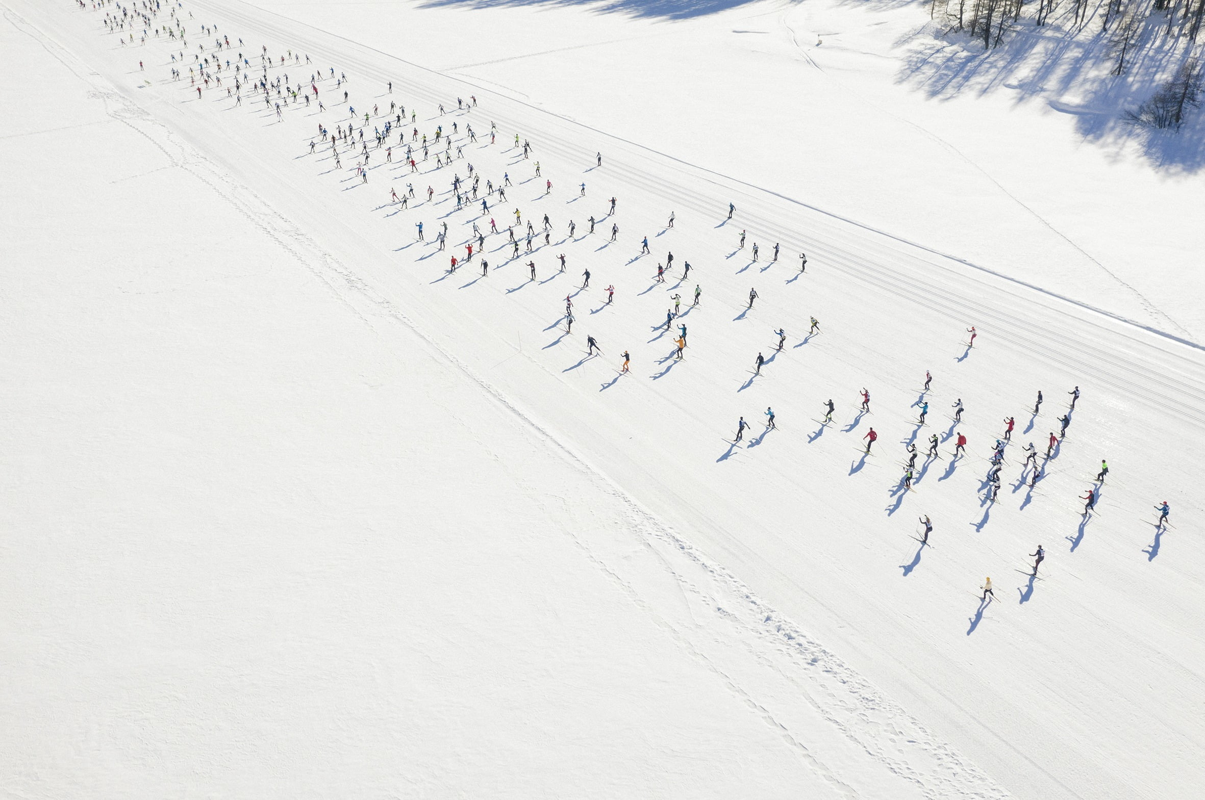 Maloja-Zernez cross-country ski race