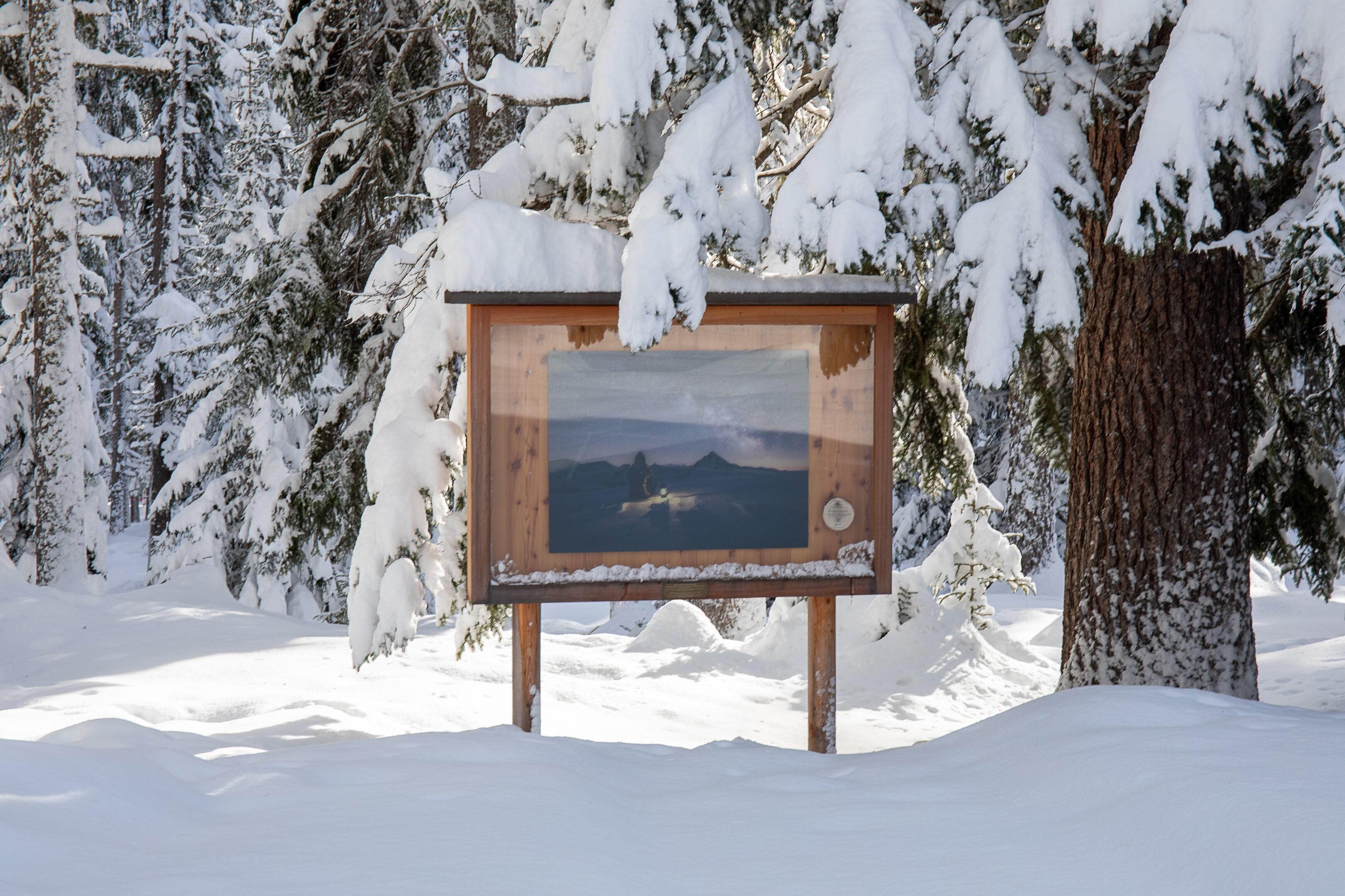 """Wald-Galerie Ausstellung """"Home"""" by babuschkina Slide 1"""
