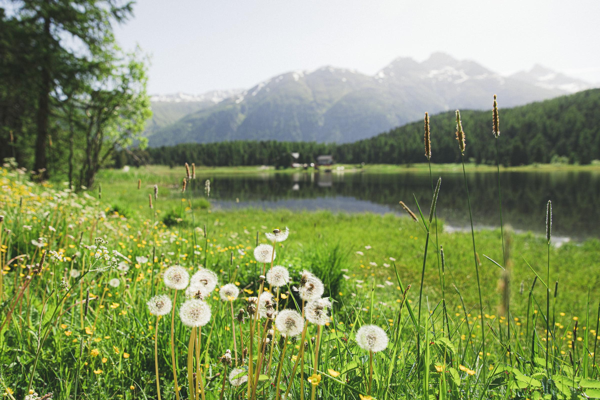 48H in St. Moritz
