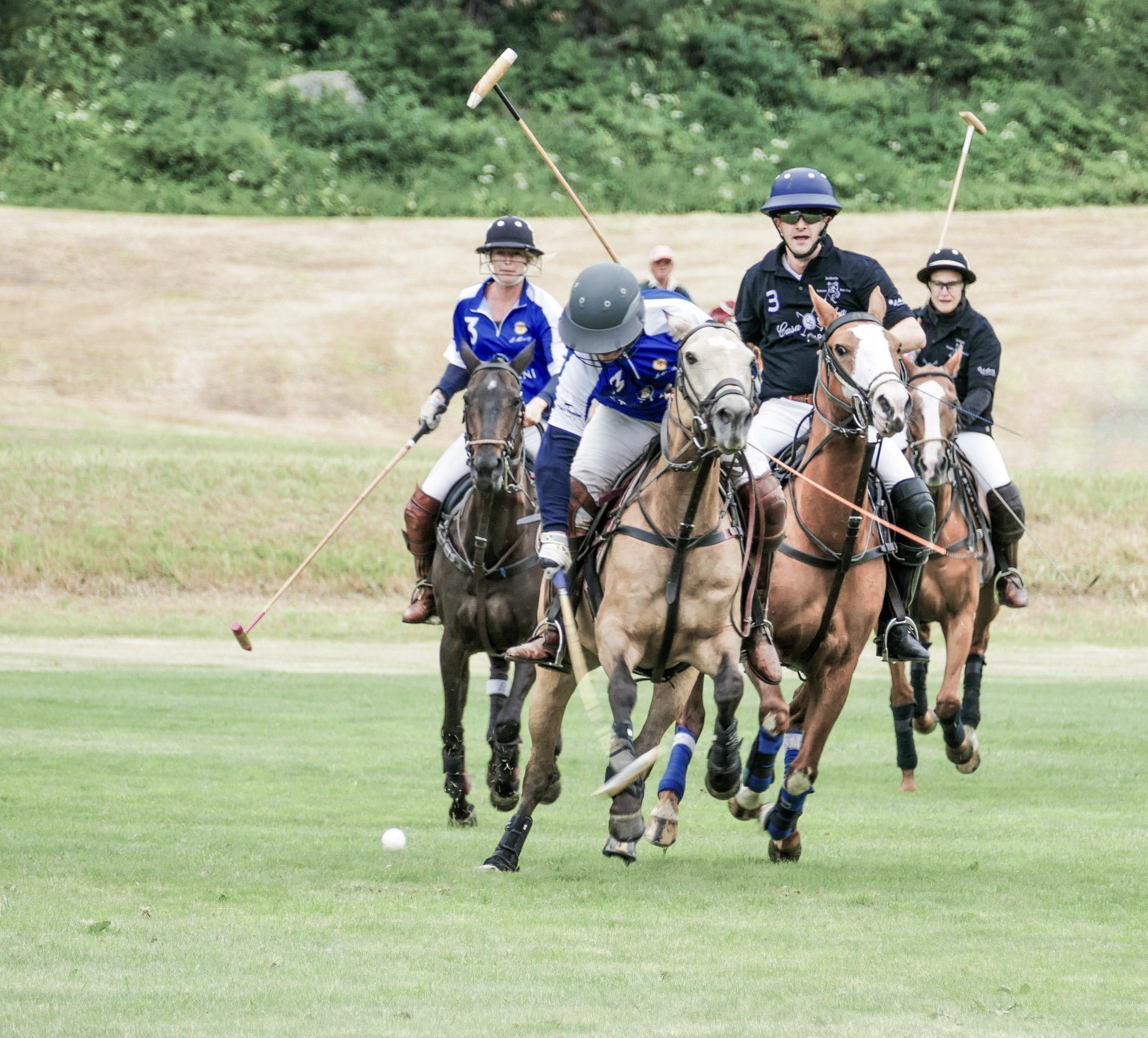 St. Moritz Sommer Polo Cup